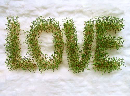 love-01ok